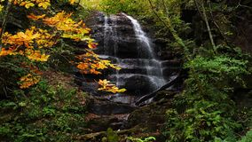 View of beautiful high waterfall in Oirase Gorge with the colorful foliage of autumn season
