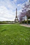 Iconic Eiffel Tower. View of the beautiful iconic Eiffel tower in Paris, France Royalty Free Stock Images