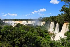 Iguasu waterfalls. Argentina.  4. A view on beautiful Iguasu waterfalls. Argentina. South America Royalty Free Stock Photography