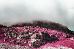 A view of beautiful landscape and rocks in a foggy day in the alps switzerland in color infrared Stock Image