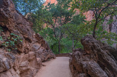 A view of beautiful  landscape  in the zion national park, utah,usa Royalty Free Stock Photos