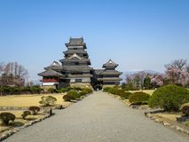 View of beautiful Matsumoto crow castle through entrance road with snow mountain and blue sky background during cherry blossom. Springtime, Nagano, Japan stock photos
