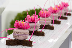 View of beautiful pastry, small colorful sweet cakes Royalty Free Stock Photos