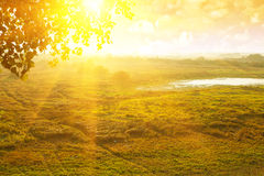 View on beautiful sunrise field in morning with royalty free stock images