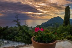 View of a beautiful sunset and a flower pot  at the coast of central Corfu Greece.  Royalty Free Stock Photography