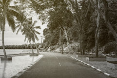 View of beautiful turning road near the sea and mountain,abstract vintage monotone filtered image. View of beautiful turning road near the sea and mountain Stock Photos