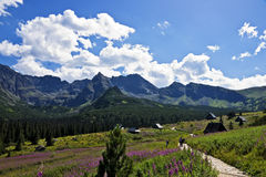 View of the beautiful valley in the Polish Tatras Royalty Free Stock Images