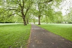 View of beautiful walkway and trees in park Stock Images