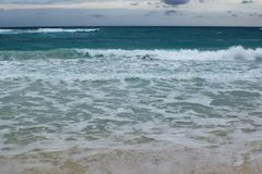 View of a beautiful white sanded beach in Cuba. Stock Photography