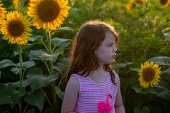 Beauty joyful young girl with sunflower enjoying nature and laughing on summer sunflower field. Sunflare, sunbeams, glow. View of Beauty joyful young girl with stock images
