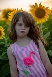 Beauty joyful young girl with sunflower enjoying nature and laughing on summer sunflower field. Sunflare, sunbeams, glow. View of Beauty joyful young girl with royalty free stock image