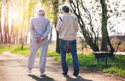 View from behind of an adult son walking with his senior father. In the park royalty free stock photography