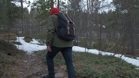 View from behind of a casual guy spending day outside, walking in autumn forest alone. Man with backpack enjoying quiet. Day outdoor stock footage