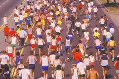 View from behind of group of runners Stock Photos