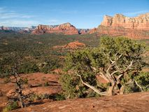 View from Bell Rock at Sedona. View of Sedona Arizona from Bell Rock Royalty Free Stock Images