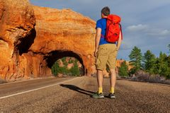 View from below of man on road near Red canyon Stock Photo