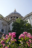 View from below of St. Paul's cathedral, London Stock Images