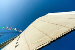 View from below of the unfurled sail of a boat called felucca, typical of the Nile River. In Egypt Royalty Free Stock Image