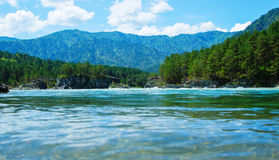 View from below the water surface Katun river Altai Mountains summer sunny day, Russia Stock Photography