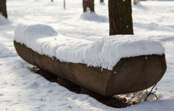 View of a bench in winter park Stock Images