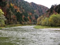 View of a bend in the Dunajec River, Poland, in autumn. View of the Dunajec River and gorge in Poland in autumn surrounded by trees with colourful foliage royalty free stock photography