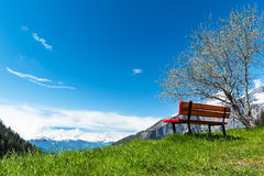 View of the Bernese Alps from the village Torrentalp, Switzerland Royalty Free Stock Images