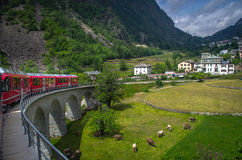 View from the Bernina Express: Alpine Town. The Bernina Express scenic train in Switzerland winds its way through an Alpine town royalty free stock images