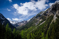 View from the Bernina Express. The Bernina Express scenic train winds through the Swiss Alps from Chur to Tirano in Italy. This is one of the views from the royalty free stock photo