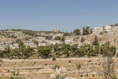 View of Bethlehem and olive mountain- the birthplace of Jesus Christ Stock Images