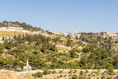 View of Bethlehem and olive mountain- the birthplace of Jesus Christ Royalty Free Stock Photography