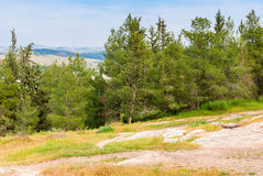 View on biblical landscape Hadid. Stock Photo