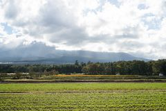 Farm near a cloudy sky at Mount Fuji. A view of a big farm near a cloudy sky at Mount Fuji stock photography