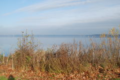 View at a big lake. How far away is the other side royalty free stock photo