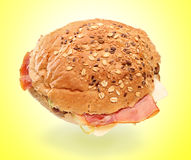 View of a big sandwich Royalty Free Stock Photography