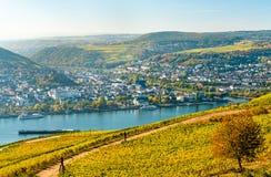 View of Bingen am Rhein from Rudesheim vineyards in the Rhine Valley, Germany. View of Bingen am Rhein from Rudesheim vineyards in the Upper Middle Rhine Valley stock image