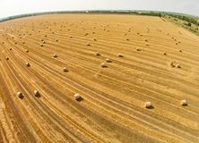 View from a bird`s eye view on a field with stacked bales of wheat Stock Photo