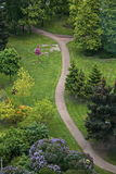 The view from the bird's eye view of the Park. Royalty Free Stock Photo