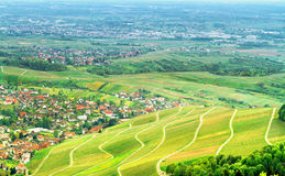 View of the black forest and typical village. Royalty Free Stock Images
