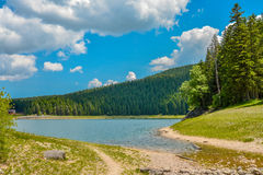 View of The Black Lake. Crno jezero in Durmitor National Park, Montenegro Royalty Free Stock Photography