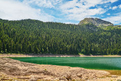 View of The Black Lake. Crno jezero in Durmitor National Park, Montenegro Royalty Free Stock Photos