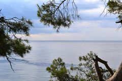 The view of the Black sea. From Alupka Park royalty free stock images