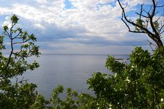 The view of the Black sea. From Alupka Park stock photo