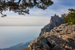 View of the Black Sea from the Crimean mountain Ai Petri. On the left is a fragment of pine. To the right of the rock massif. Plac stock photo