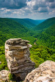 View of the Blackwater Canyon from Lindy Point, Blackwater Falls Stock Images
