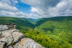 View of the Blackwater Canyon from Lindy Point, at Blackwater Falls State Park, West Virginia.  royalty free stock images
