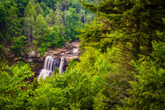 View of Blackwater Falls from the Gentle Trail, at Blackwater Fa Stock Photos