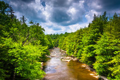 View of the Blackwater River from a bridge at Blackwater Falls S Stock Photography