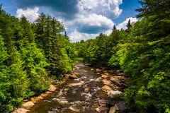 View of the Blackwater River from a bridge at Blackwater Falls S Stock Photos