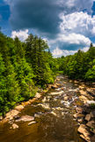 View of the Blackwater River from a bridge at Blackwater Falls S Royalty Free Stock Photo