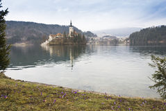 View on Bled Lake Stock Image